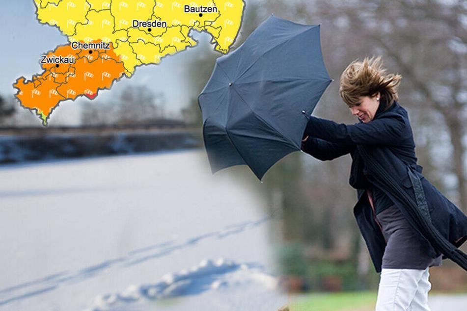 Bis zu minus 10 Grad in Sachsen! Orkanböen sorgen für Kälte-Peitsche