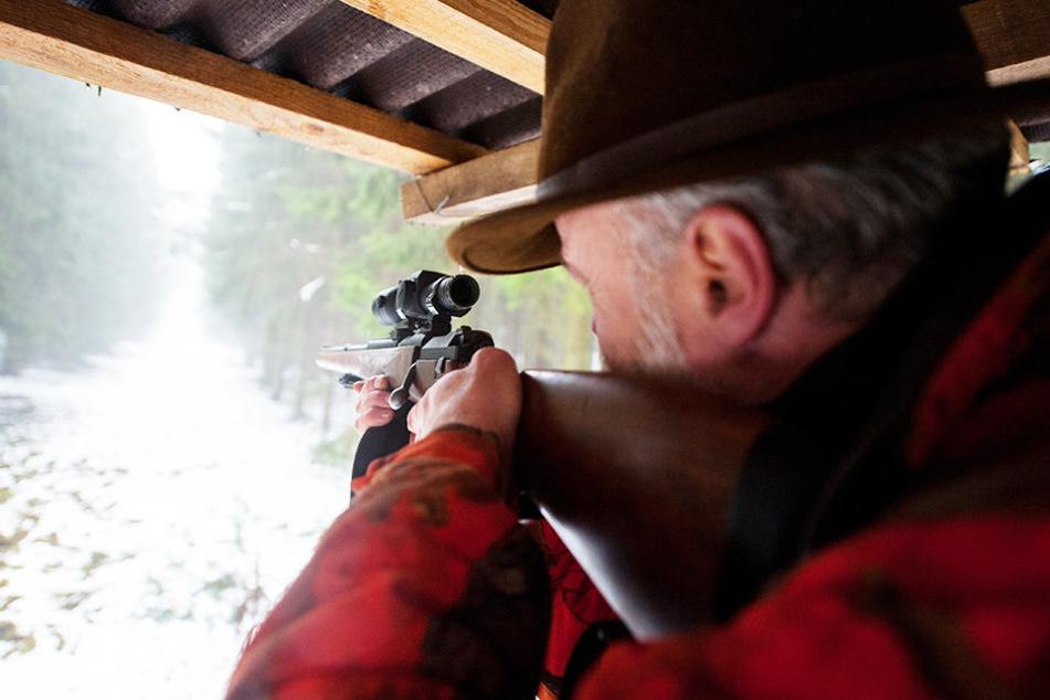 In NRW gibt es so viele Jäger wie nirgendwo sonst in Deutschland.