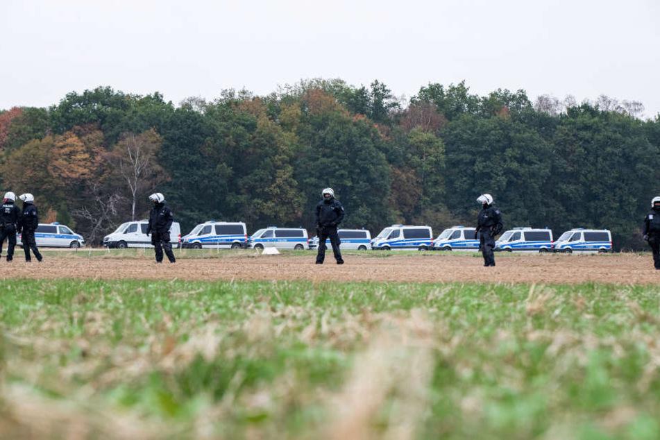Erste Baumhäuser geräumt: Massive Polizeikräfte im Hambacher Forst