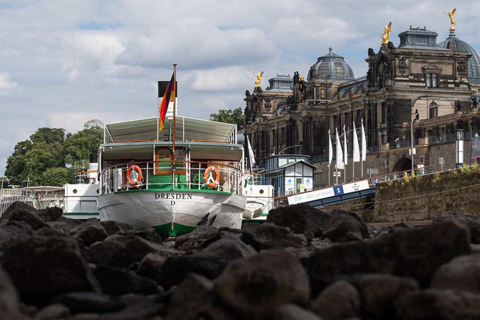 Die Sächsische Dampfschiffahrt sitzt auf dem Trocknen - in vielerlei Hinsicht.