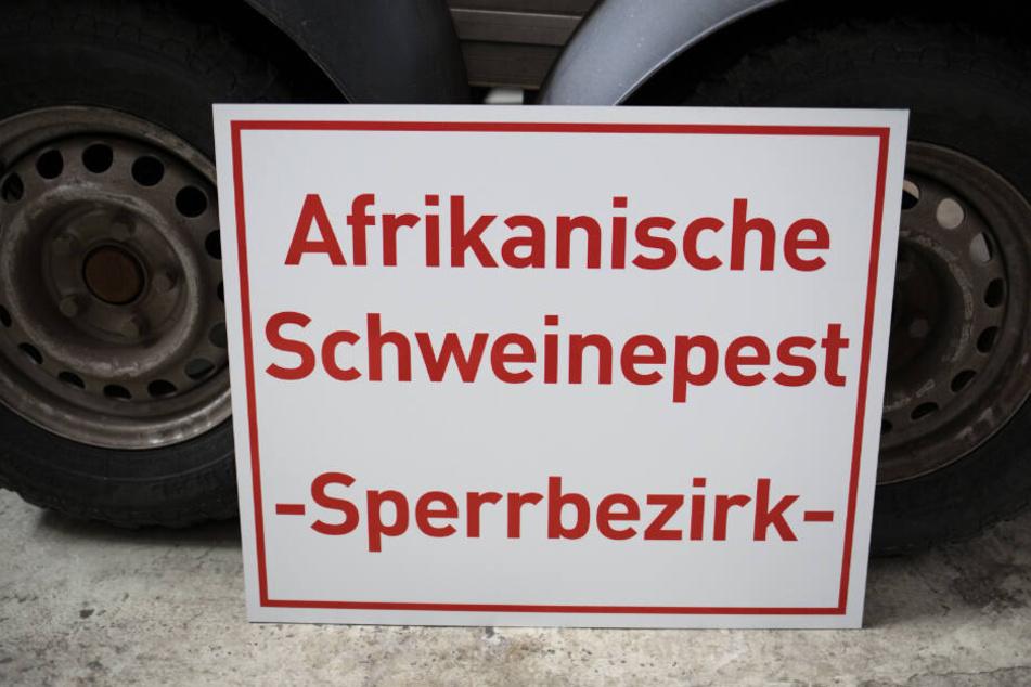 """Ein Schild mit der Aufschrift """"Afrikanische Schweinepest - Sperrbezirk-"""" steht bei einem Rundgang durch das hessische Zentrallager für Tierseuchenbekämpfungsmaterial an einen Anhänger gelehnt."""