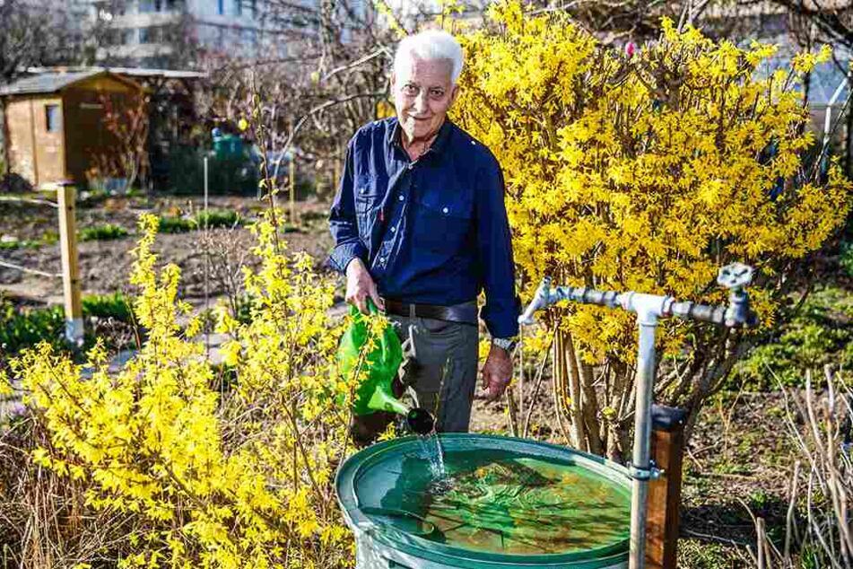 Amsel, Drossel, Fink und Star besuchen Helmut Fischer (82) gern in seinem Gärtchen. Die Vögel finden dort Wasser zum Trinken und Baden.
