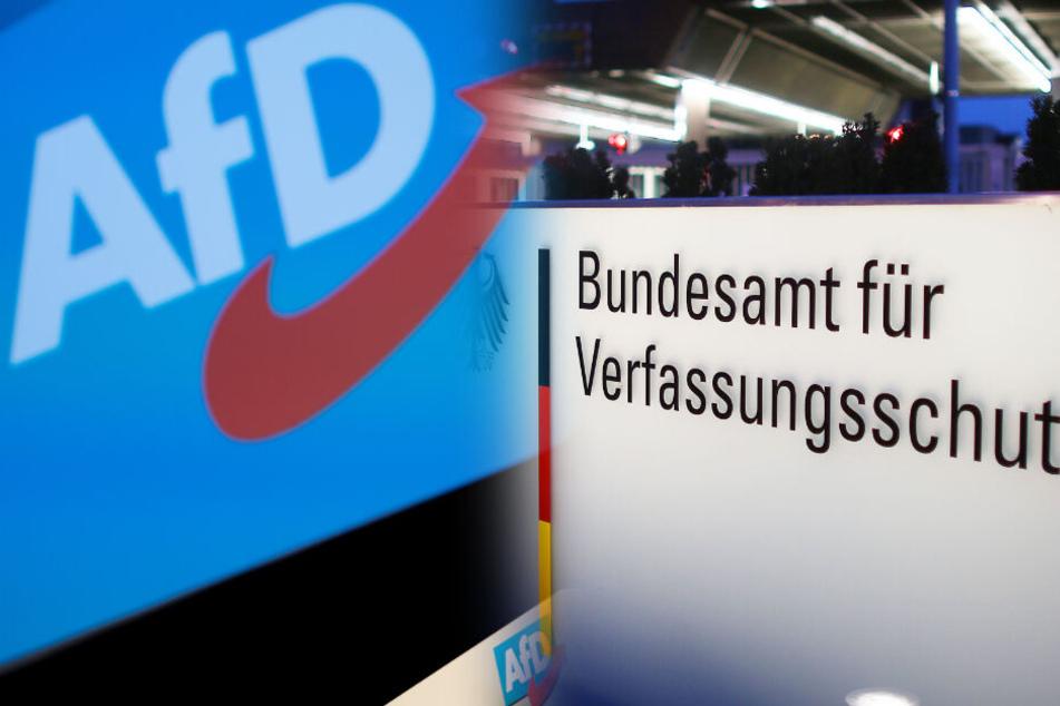 Auch in NRW wird der Landesverband der AfD auf verfassungsfeindliche Tendenzen überprüft.