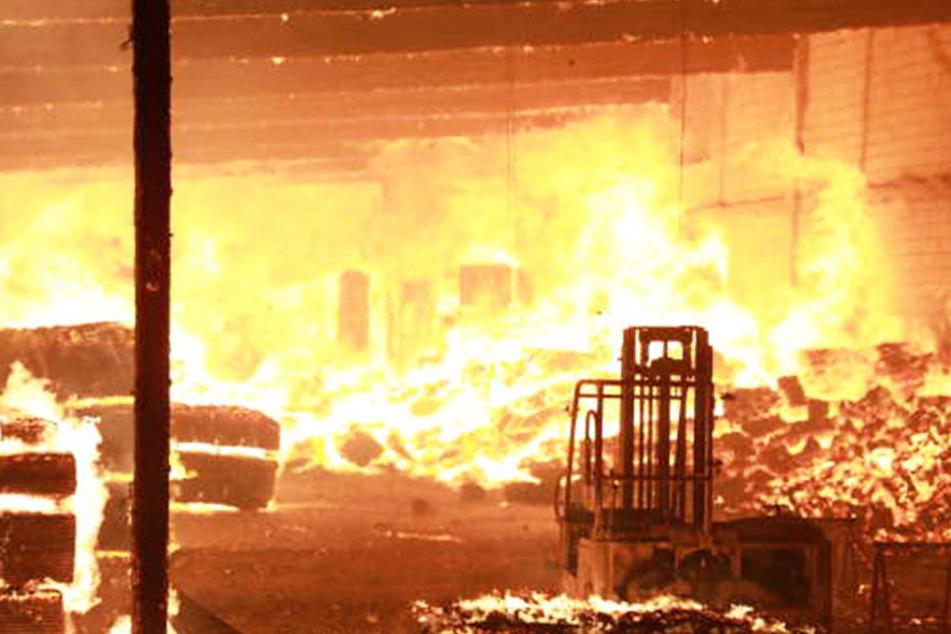 Ein Holzhandel in Coswig fing im Februar 2018 Feuer. Der mutmaßliche Brandstifter wurde festgenommen.