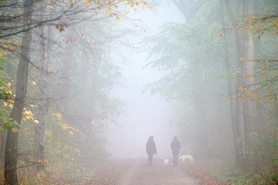 Nebel und Regen: Trübe Aussichten für NRW