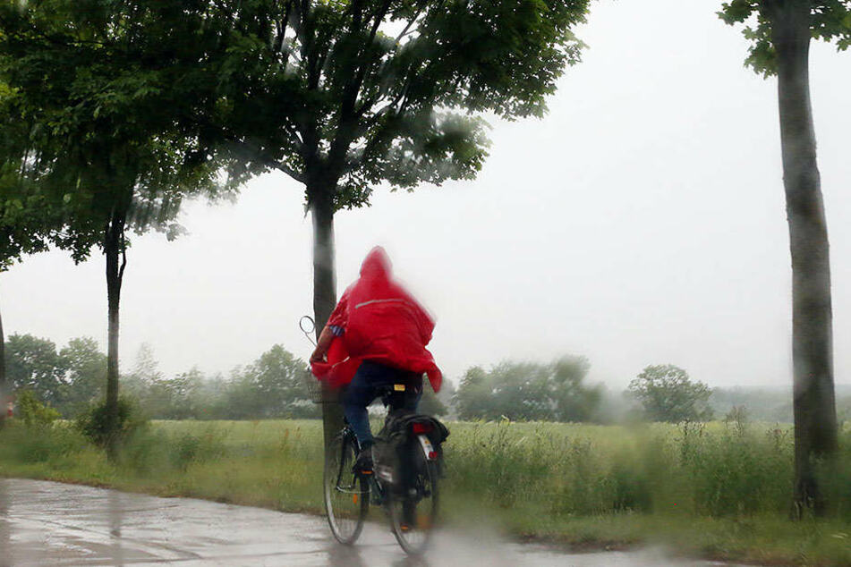 Brandenburg blieb weitestgehend verschont, abgesehen vom Starkregen, Blitzen und Donner.