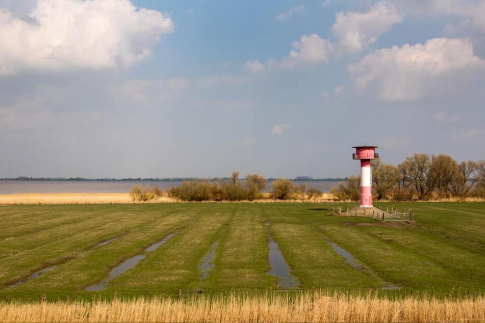 Bisher ist das Land am geplanten Elbtunnel landwirtschaftlich geprägt.