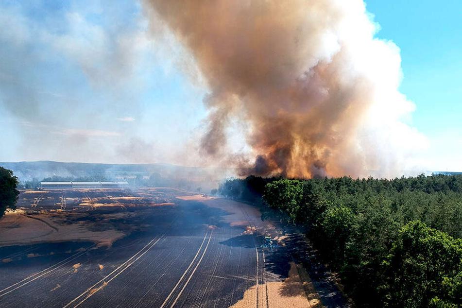 In letzter Minute! Feuerwehr rettet sächsische Gemeinde vor Flammen-Hölle
