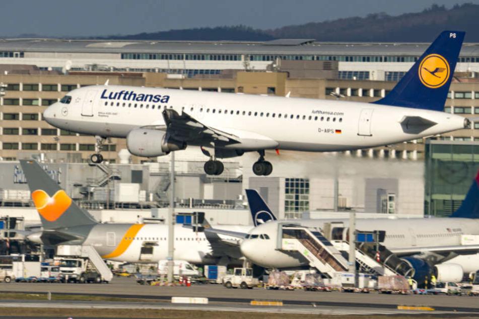 Eine Lufthansa-Maschine startet vom Frankfurter Flughafen (Symbolfoto).