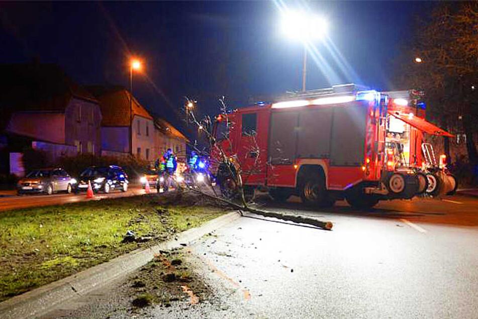 Bei der unkontrollierten Fahrt überfuhr der 56-Jährige einen Baum.