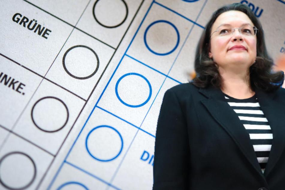 Sinkende Umfragewerte: Das will Andrea Nahles in der SPD ändern