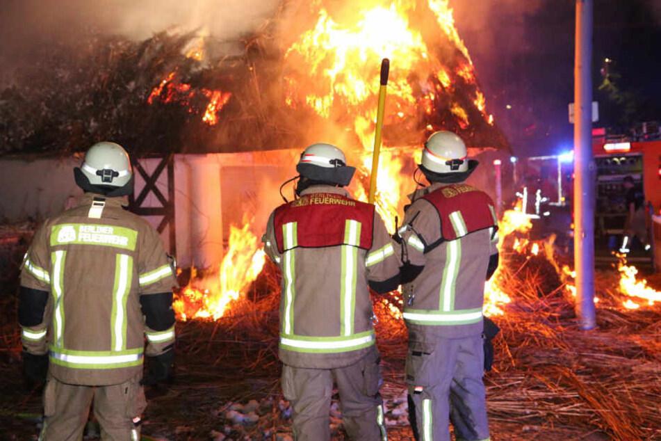 Niedergebrannt! Historischer Kiosk steht lichterloh in Flammen
