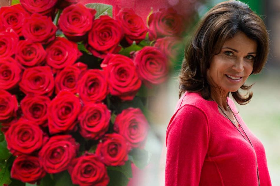Die Schauspielerin Gerit Kling wird der neue Star in der Telenovela.