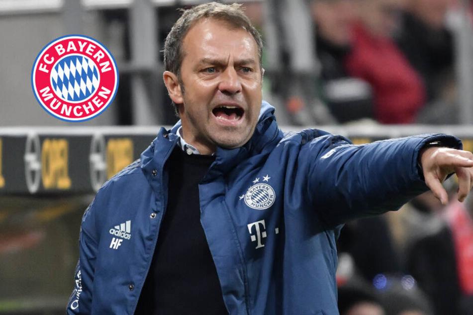 Der FC Bayern an der Spitze: Stimmen und Reaktionen nach dem Spiel