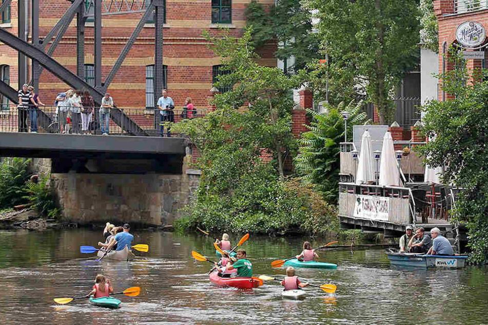 Kinder paddeln in Kanus auf der Weißen Elster in Leipzig - auch hier herrscht von vor allem Abends Mückenalarm.