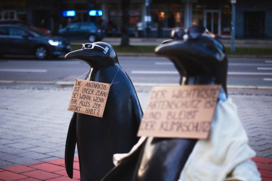 Auch in Chemnitz ist eine Demo zum Klimaschutz geplant.