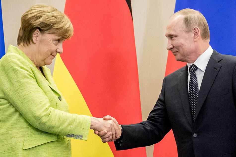 Angespanntes Verhältnis? Ein freudiger Händedruck zwischen Merkel und Putin.
