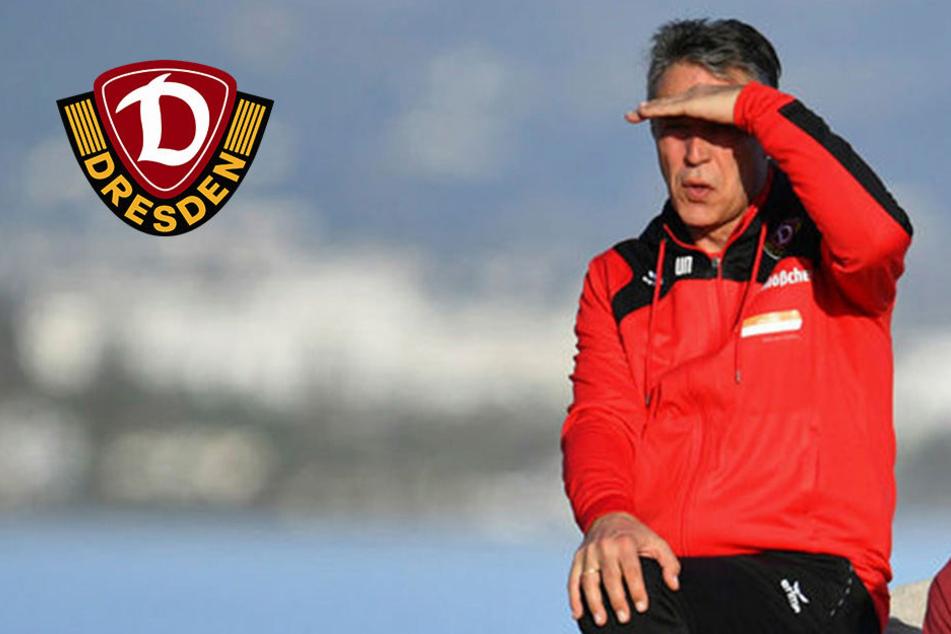 Uwe Neuhaus ist bei Dynamo schon mehr als 1000 Tage im Amt