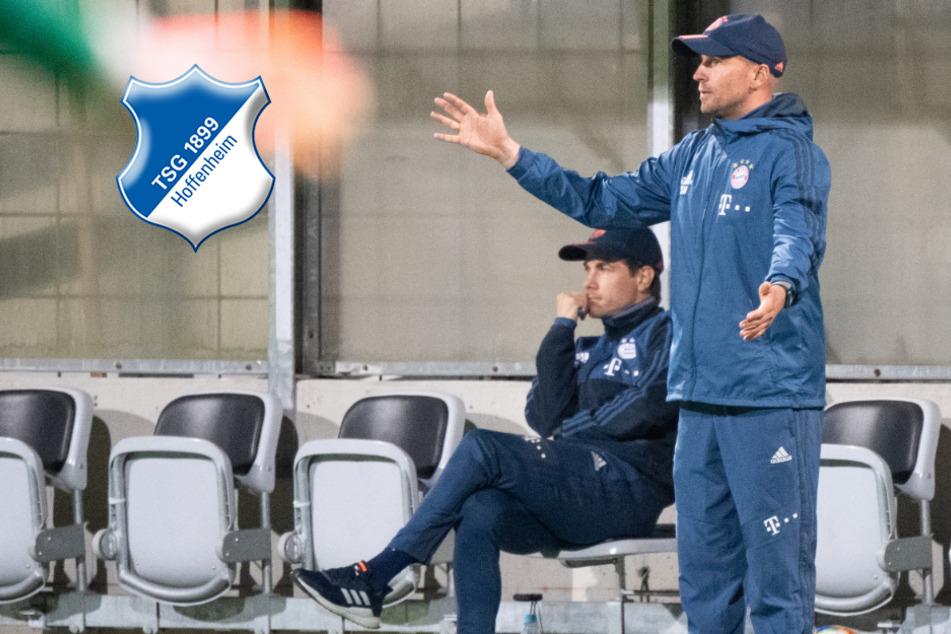 Offiziell: Hoeneß neuer Coach bei der TSG Hoffenheim