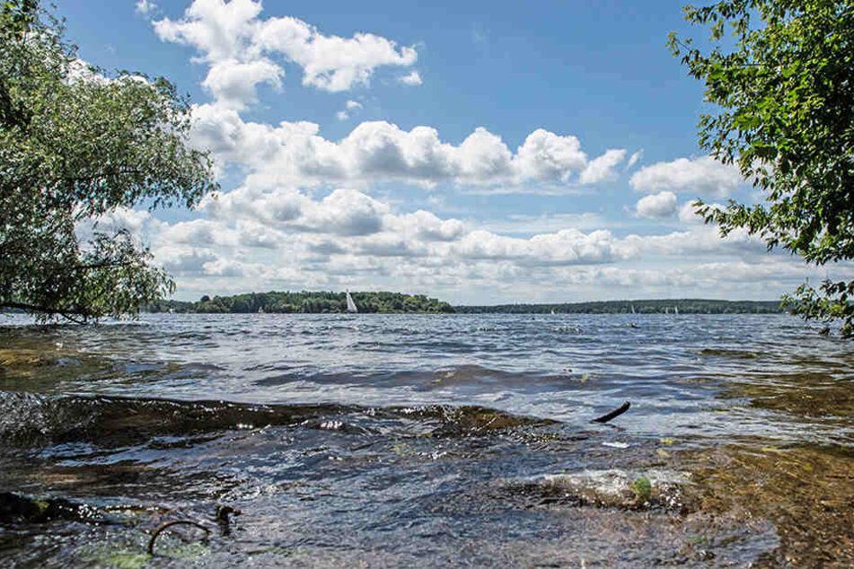 Die untere Havel ist ein beliebtes Ausflugsziel und endlich für den Badespaß freigegeben. (Symbolbild)