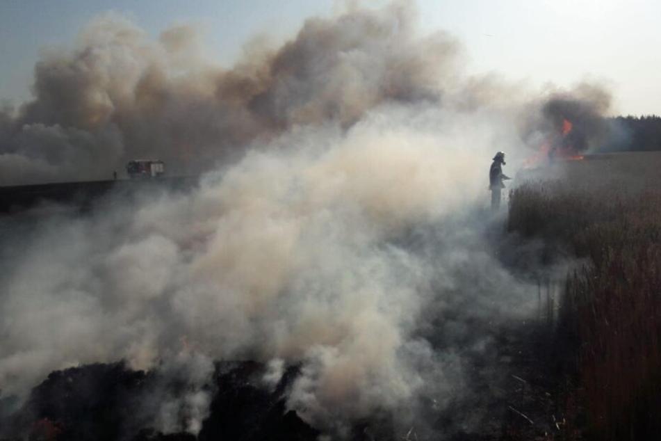 Ein nah gelegenes Feld brannte lichterloh.