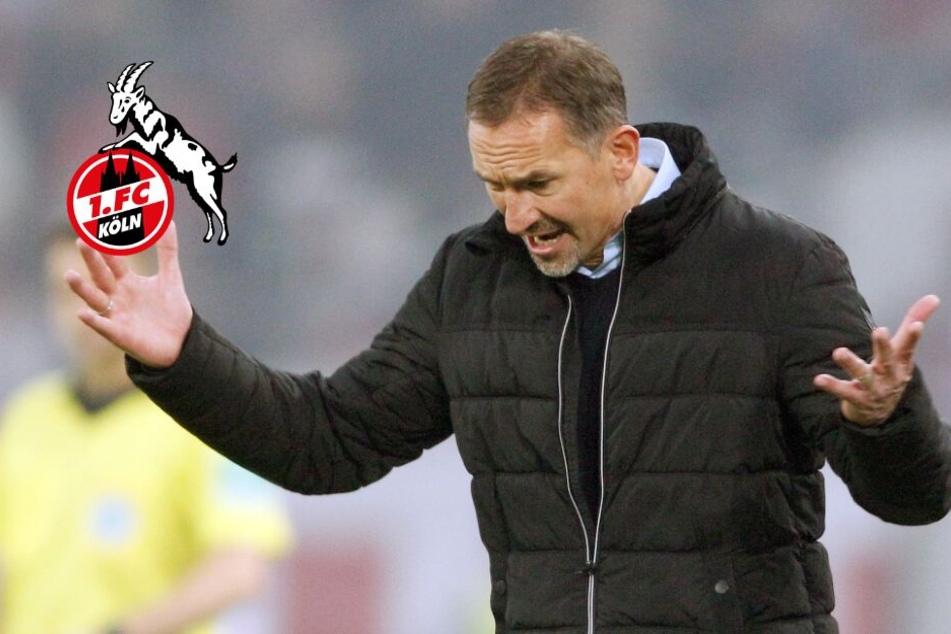 Beierlorzer bleibt Trainer in Köln: Manager Veh legte Veto ein
