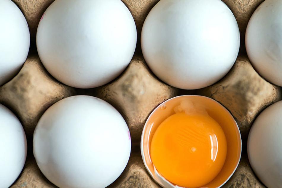 Gift-Eier in Berlin: Supermarkt meldet belastete Produkte