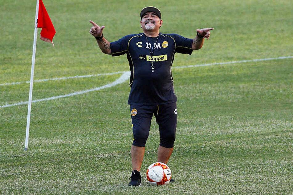 Könnte bald Trainer von Usain Bolt sein: Fußball-Legende Diego Armando Maradona.