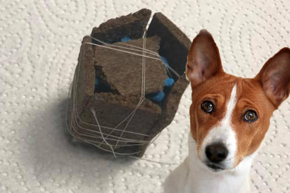 Tierarztpraxis warnt vor Giftködern: Hier sind Hundehasser unterwegs