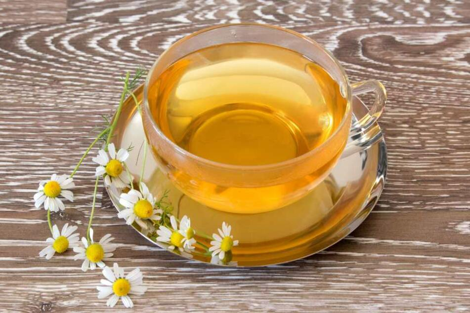 Dieser Kamillentee macht mit Sicherheit nicht gesund! Die Stiftung Warentest warnt ausdrücklich vor den krebserregenden Stoffen im Tee.