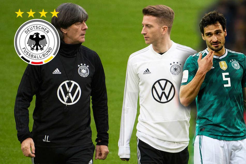 Weitere Nachnominierungen! Löw holt Routinier und Newcomer ins DFB-Team
