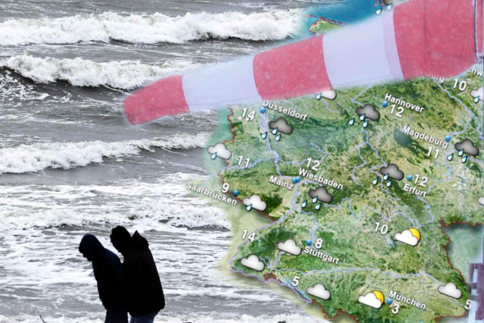 """Nach Orkantief """"Sabine"""": Droht jetzt der nächste Sturm?"""
