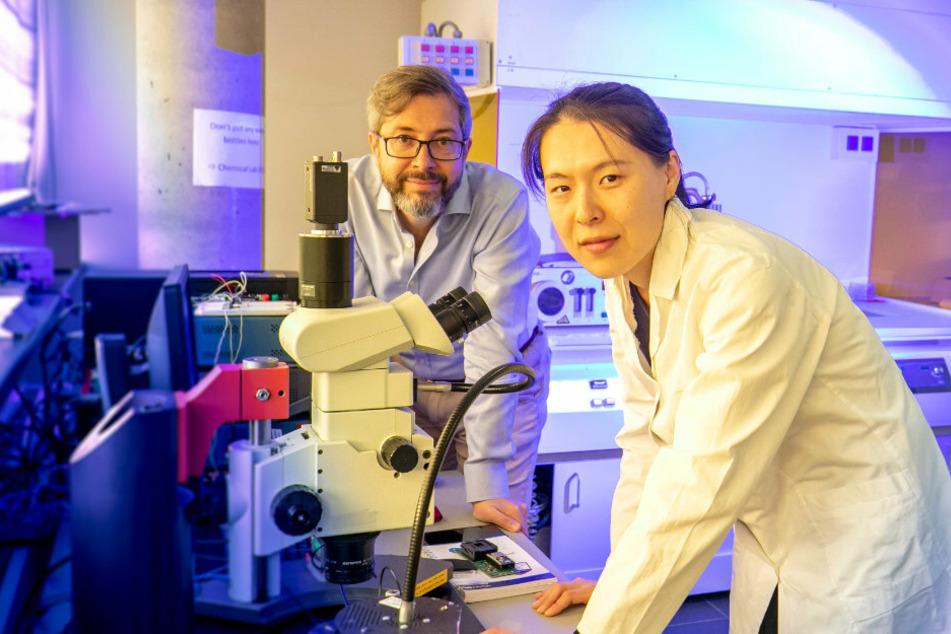 Gianaurelio Cuniberti (50) von der TU Dresden arbeitet mit einem Team aus Spezialisten und Doktoranden (im Bild: Xinne Zhao, 29) an einem Corona-Schnelltest auf bioelektronischer Basis. Ein ähnliches Verfahren hat Cuniberti bereits für den Vogelgrippe-Virus H1N1 entwickelt.