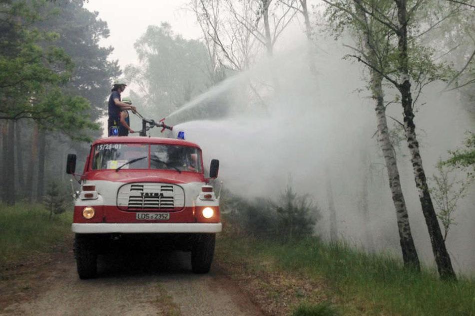 Die Feuerwehr kämpft gegen das Feuer in der Lieberoser Heide. (Archivbild)
