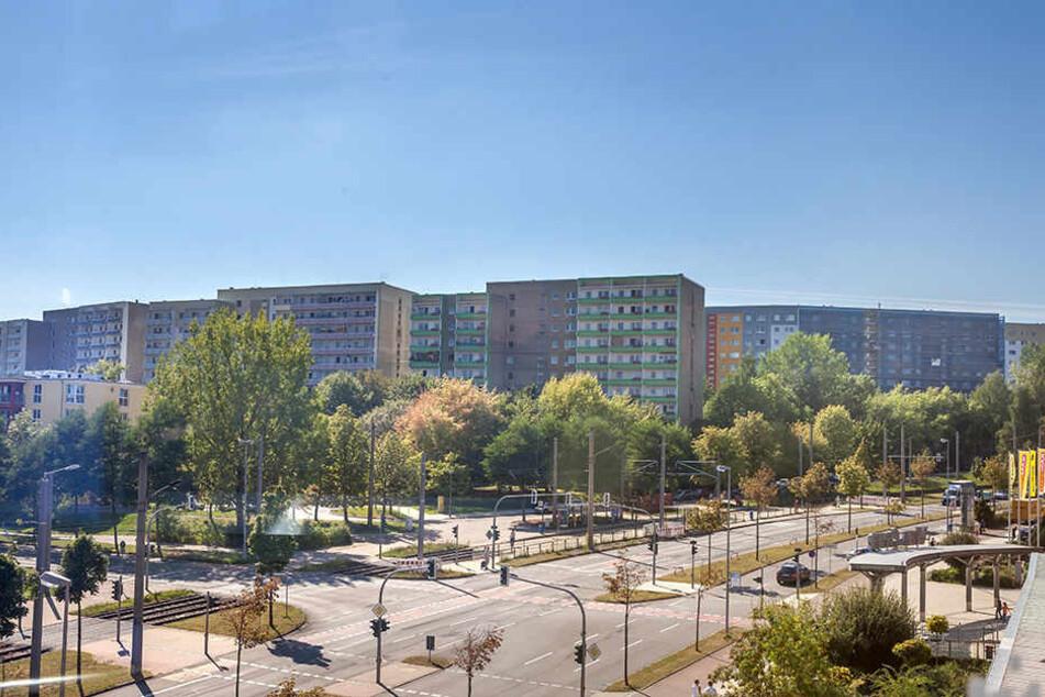 Das Heckert-Gebiet hat zwar auch soziale Brennpunkte. Die meisten Sozialhilfeempfänger wohnen aber auf dem Sonnenberg oder im Zentrum.