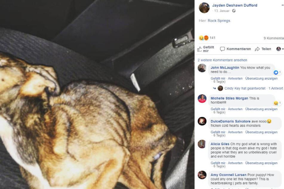 Jayden Dufford zeigte sich auf seiner Facebook-Seite schockiert. Angel starb in seinem Auto.