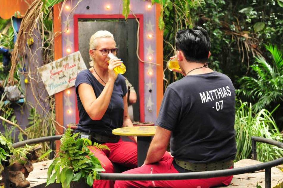 Ein Glas voller Kuh-Urin: Bei der Dschungel-Prüfung haben Camp-Mutti Natascha Ochsenknecht und Crash-TV-Memme Matthias Mangiapane nichts zu lachen.