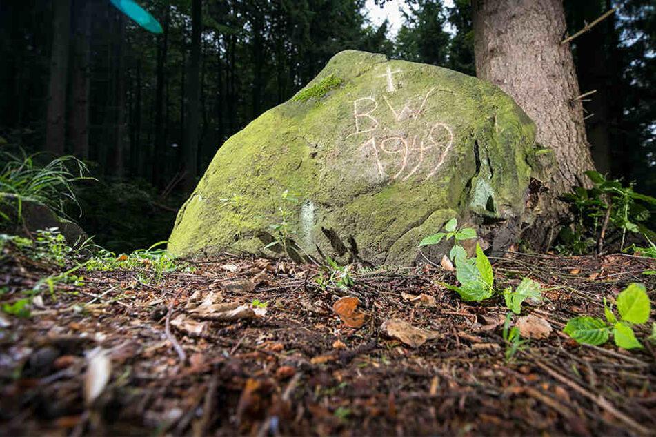 Verunglückte die Lehrerin an diesem Stein? Der bemooste Minifels steht direkt an einem steilen Waldweg, trägt eine mysteriöse Inschrift.