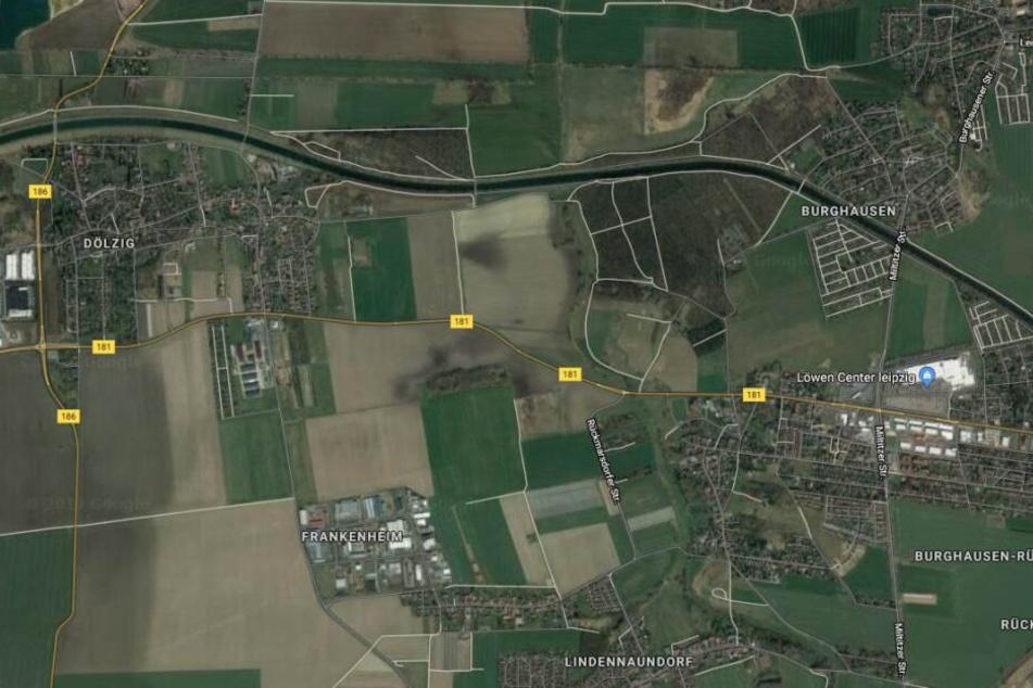 Der Fundort liegt zwischen Frankenheim, Dölzig und Burghausen-Rückmarsdorf.
