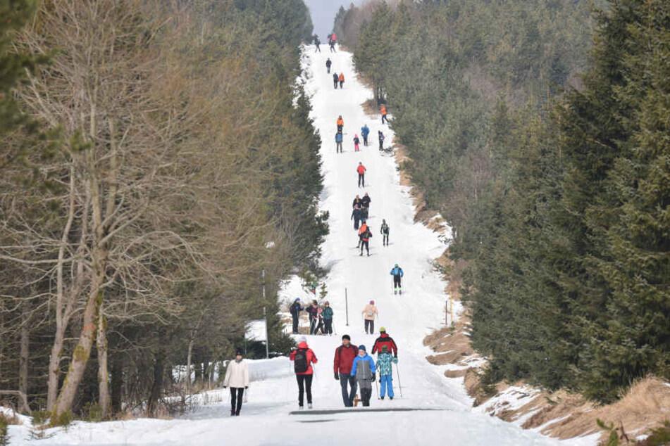 Hinterm Horizont geht's weiter! In Altenberg wurde das Loipennetz in den warmen Monaten ausgebessert.