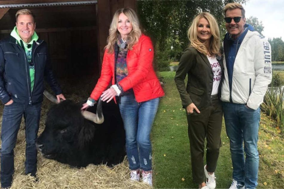 So läuft die Instagram-Challenge zwischen Dieter Bohlen und Frauke Ludowig