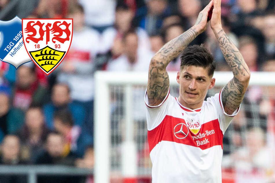 Jubel-Eklat bei VfB gegen Hoffenheim: TSG-Coach Nagelsmann sauer auf Zuber