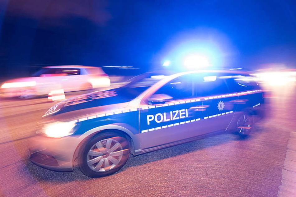 Trotz langer Anfahrtszeiten versichert die Polizei, dass sie schnell vor Ort sei, wenn es einen Notfall gäbe. (Symbolbild)