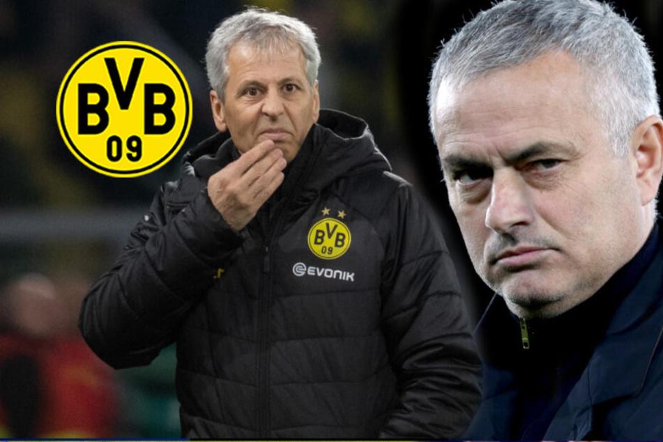 """Jose Mourinho zum BVB? """"The Special One"""" wohl Kandidat für Favre-Nachfolge!"""