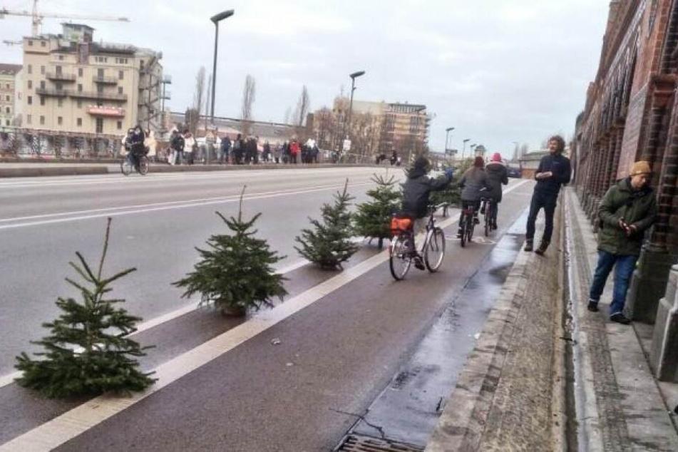 Weihnachtsbäume auf der Oberbaumbrücke.
