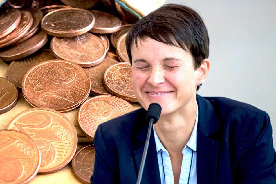 Frauke Petry behält Doppelmandat und kassiert doppelt