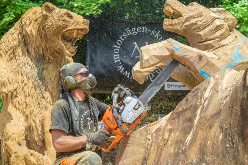 Michael Tamoszus (48) aus Herrenberg ist zum 4. Mal zum Wettbewerb in Blockhausen. Hier sägt er einen Bären mit zwei Wölfen im Kampf.