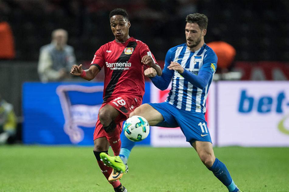Herthas Mathew Leckie (r) und Leverkusens Wendell kämpfen um den Ball.