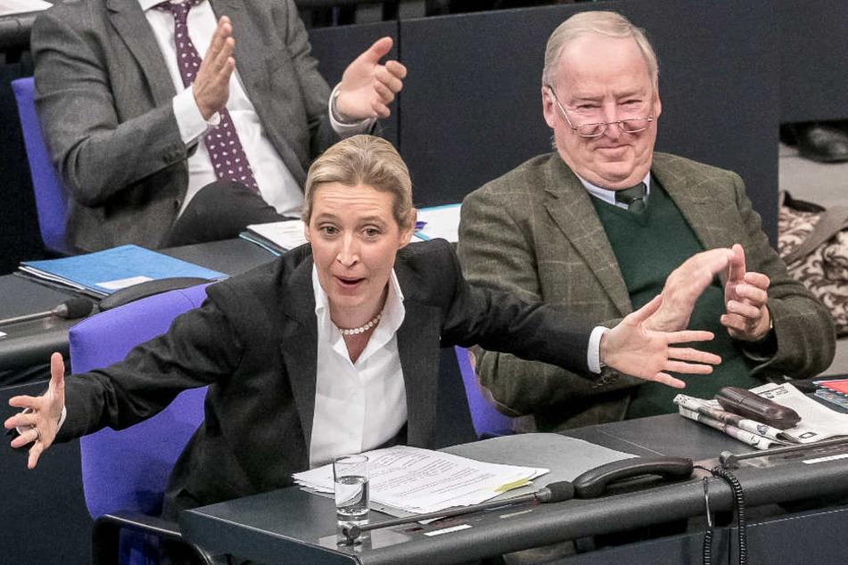 Weidel neben Alexander Gauland am Mittwoch im Bundestag.