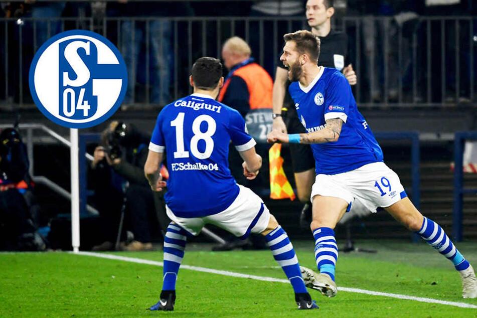 Schalke nach klarem Sieg gegen Galatasaray auf Achtelfinal-Kurs!